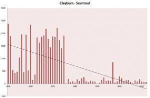 Clayburn 2
